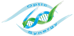 Articles divers sur OPTIC SYNERGY – Juin 2013
